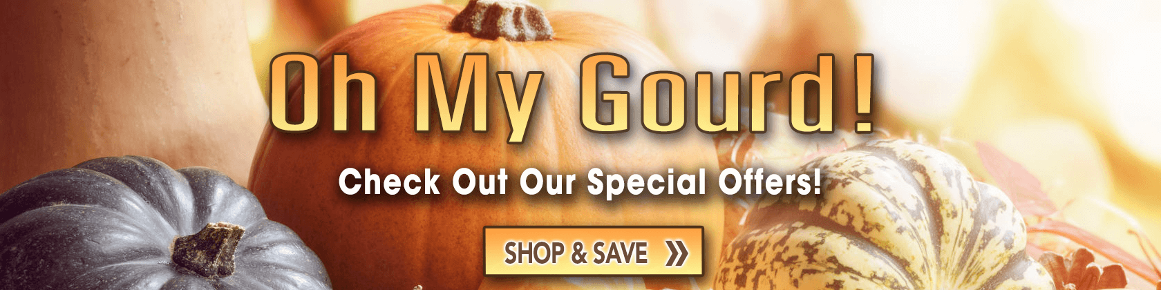 Oct 7 Special Offer Desktop