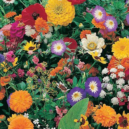 Garden Fragrance Roll Out Seed Mat-348133
