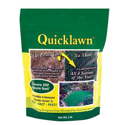 Quicklawn® Grass Seed, 1 Pound-367069