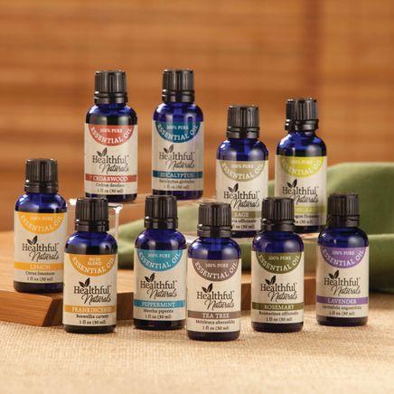 Healthful™ Naturals Premium Essential Oil Kit-356539