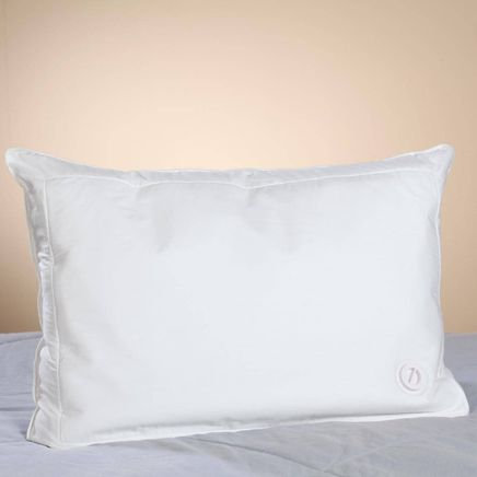 Water Pillow-358874