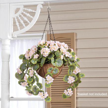 Geranium Hanging Stem by OakRidge™-355281