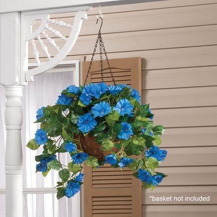 Petunia Hanging Stem by OakRidge™-355283