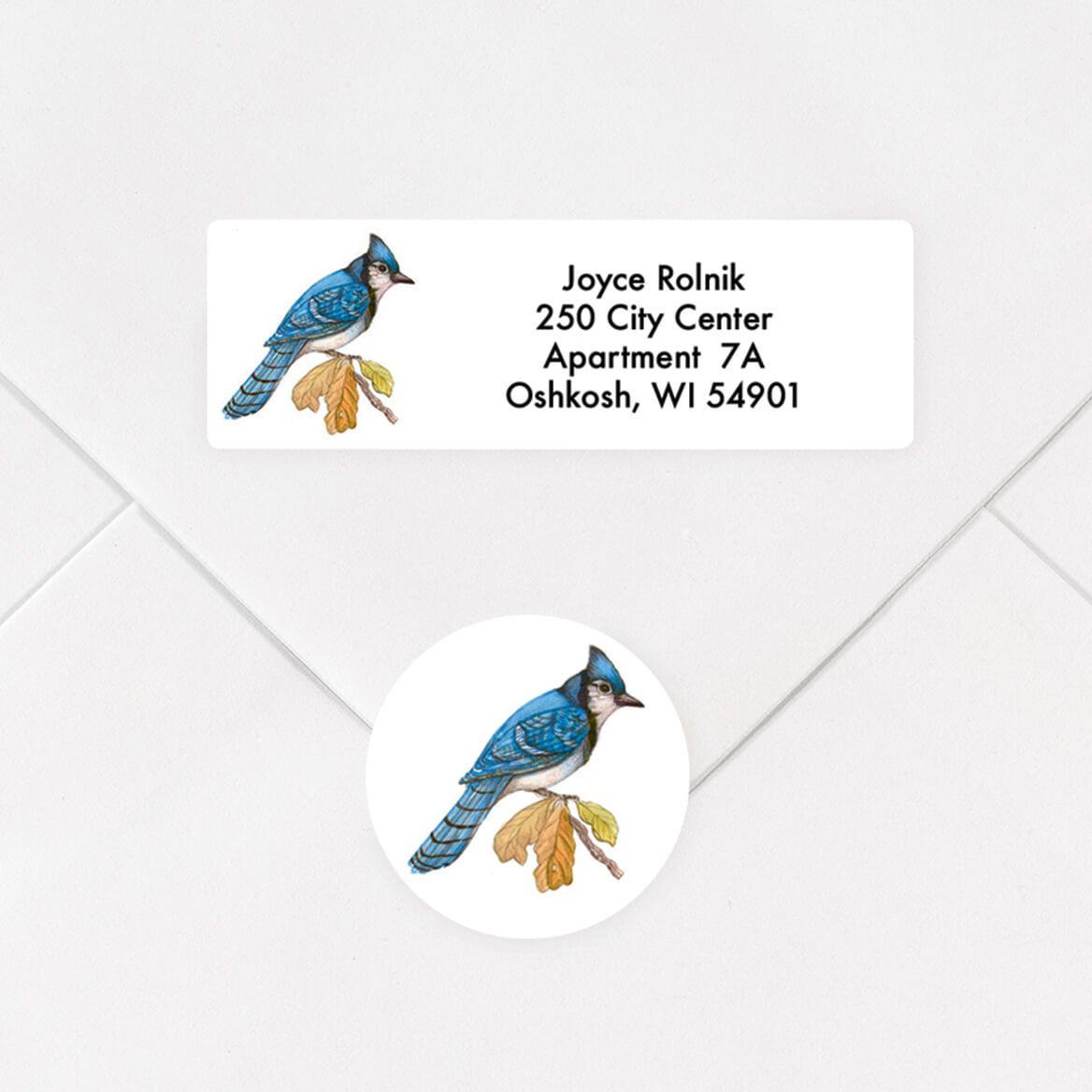 Personalized Wild Birds Address Labels and Envelope Seals Set-357546