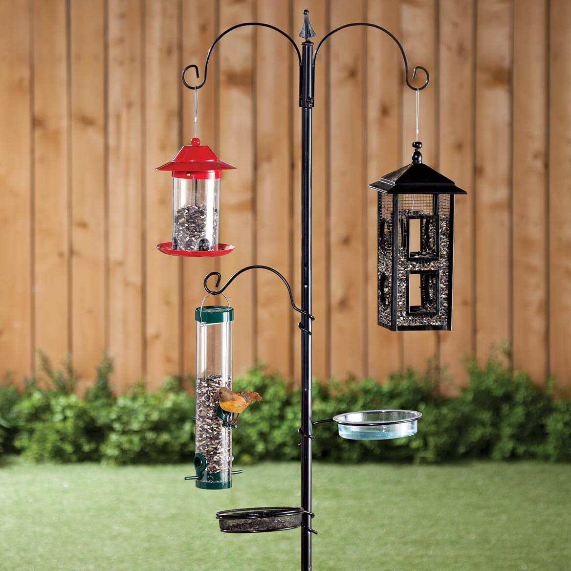 Wild Bird Feeding Station-358086