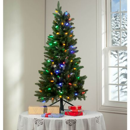 4-Foot Tree with C6 Bulbs by Holiday Peak™-360824