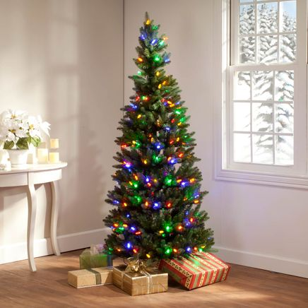 6-Foot Tree with C6 Bulbs by Holiday Peak™-360825