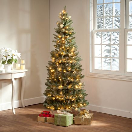 6-Foot Blue Spruce Tree with Lights by Holiday Peak™-360827