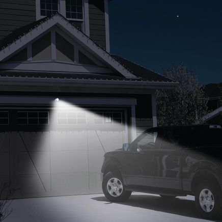 Adjustable Indoor/Outdoor Extra Bright Light-364560