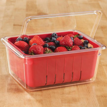 3 Pc Berry Basket Colander and Storage Container-365894
