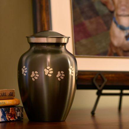 Personalized Gray Brass Paw Print Pet Urn-365913