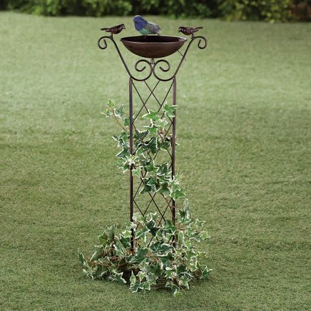 Bird Bath with Trellis-366290