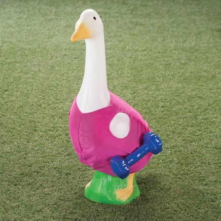 Fitness Goose Outfit-367009