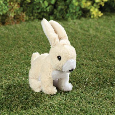 Hoppy the Bunny-369185