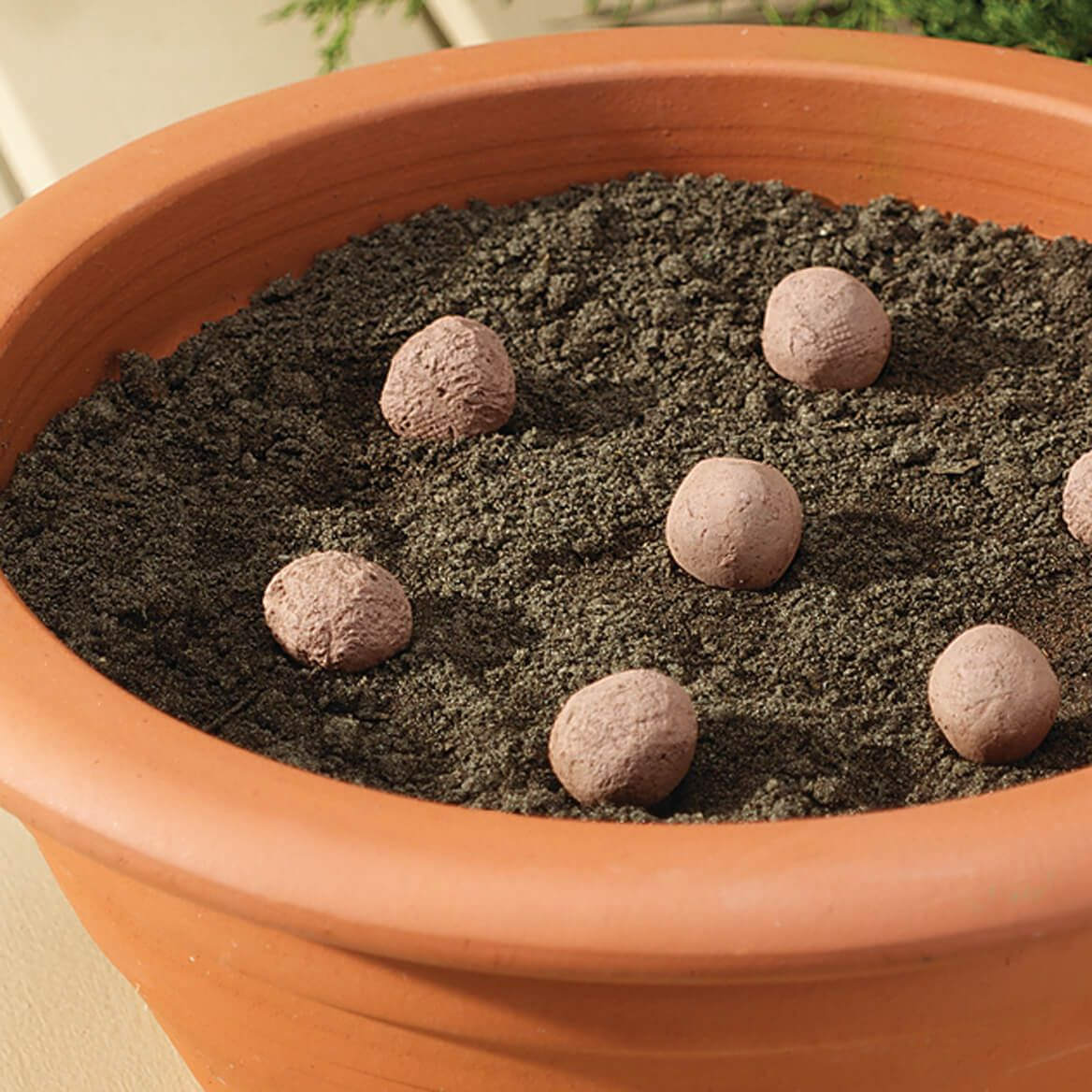Seed Stones Wild Bird Mixture-370554