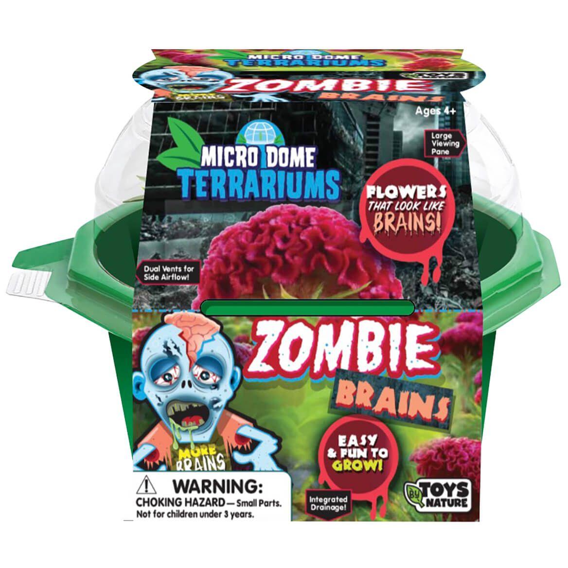 Zombie Brains Micro Dome Terrarium-372317