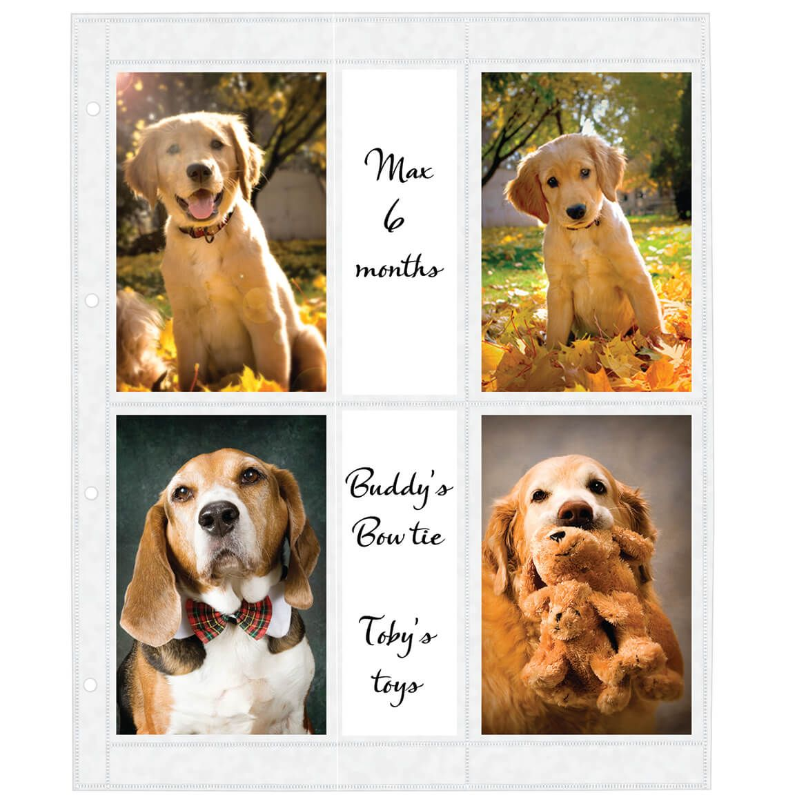 Oversize Album Pages 4x6, 8 Per Page 4 Ring-309386