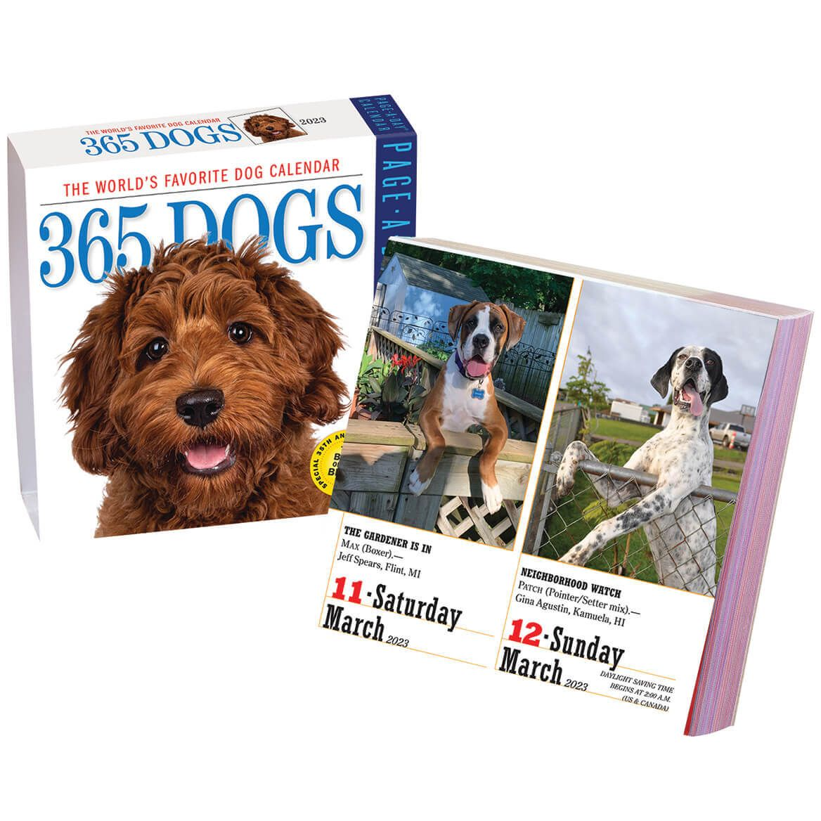 Dog Or Cat Page A Day Calendar-310671