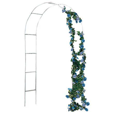 Garden Arch Trellis-318049