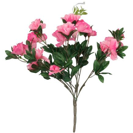 Azalea Bush by OakRidge™-341368