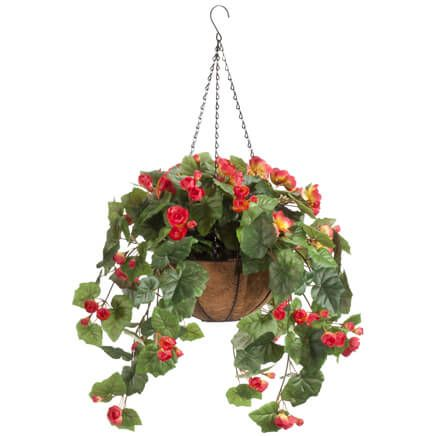 Fully Assembled Begonia Hanging Basket by OakRidge™-355016
