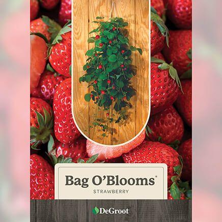 Bag O'Blooms® Strawberries-362193