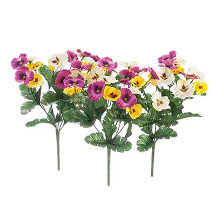 Pansy Bushes, Set of 3 by OakRidge™-364118
