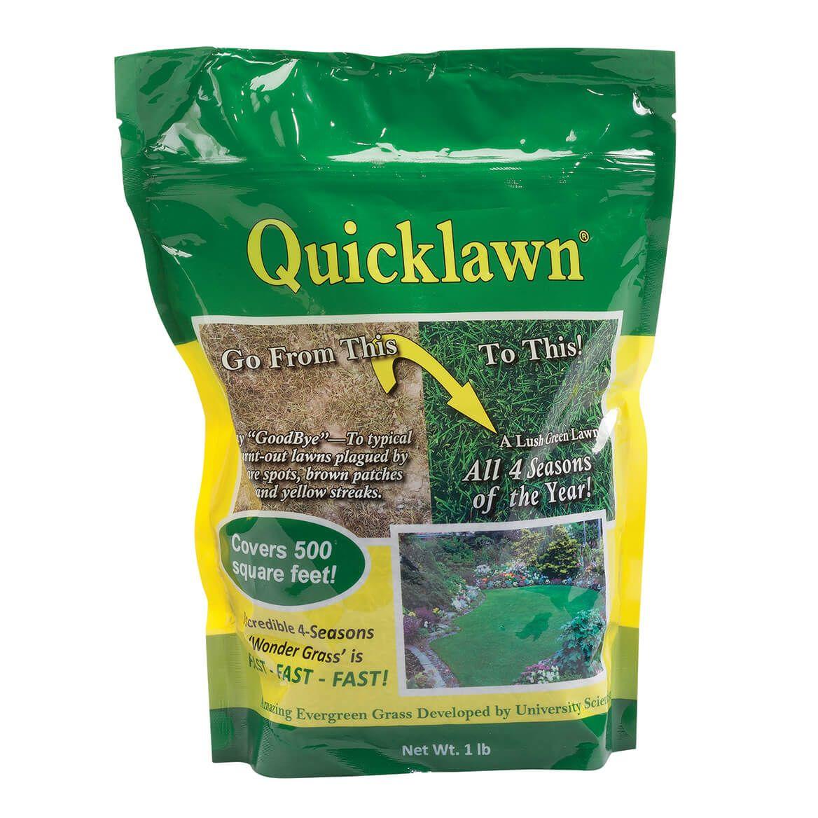 Quicklawn® Grass Seed, 1 Pound-367069