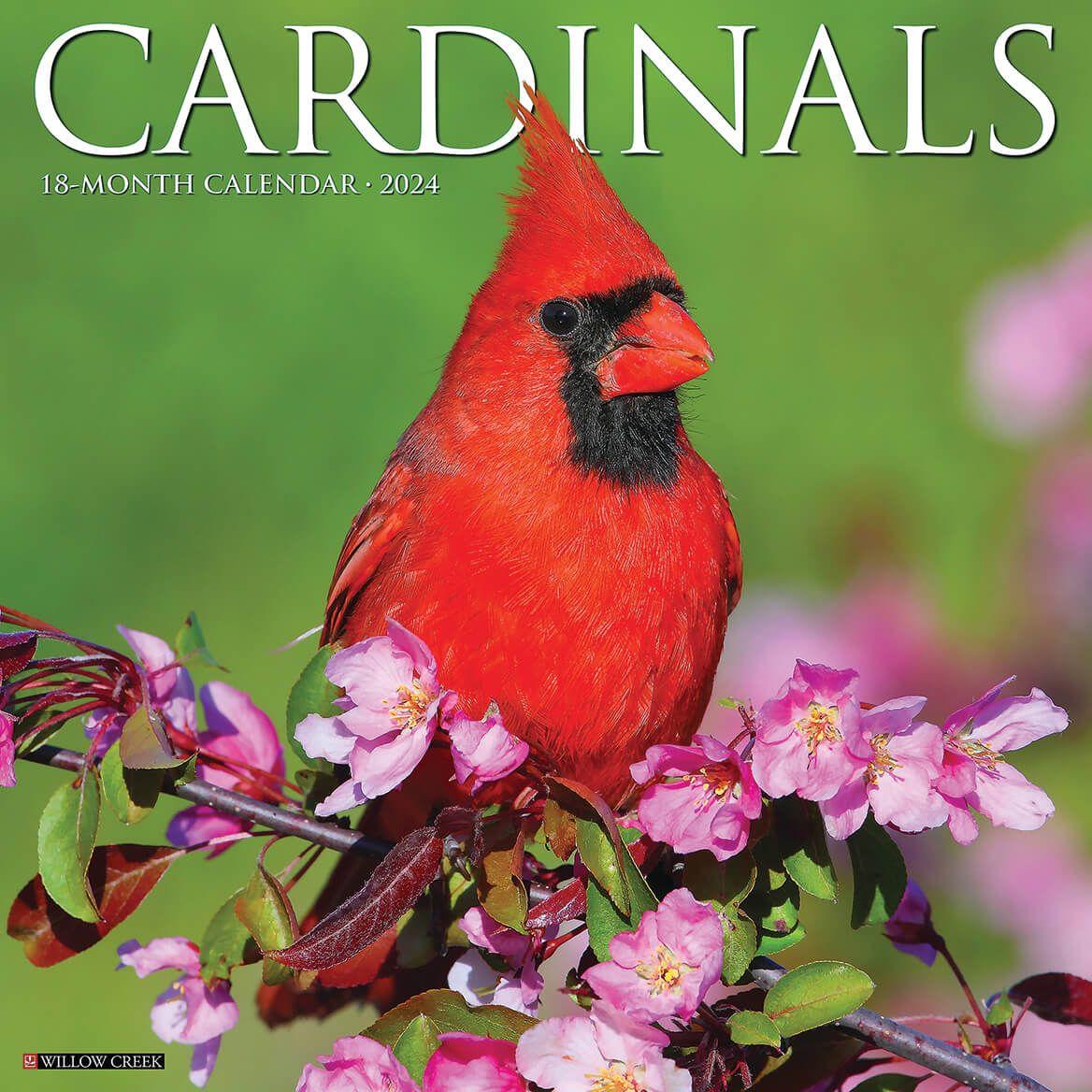 Cardinals Wall Calendar-371920