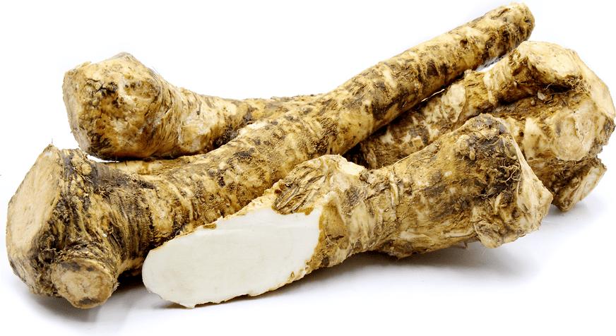Horseradish Root Native Remedies