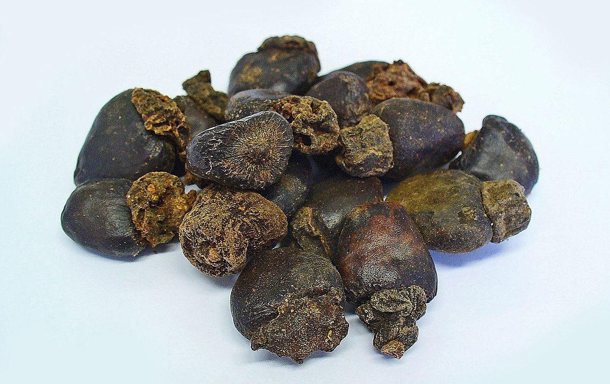 Anacardium_Orientale_Native_Remedies.jpg