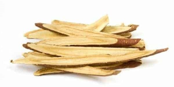 Astragalus_Root_Native_Remedies.jpg