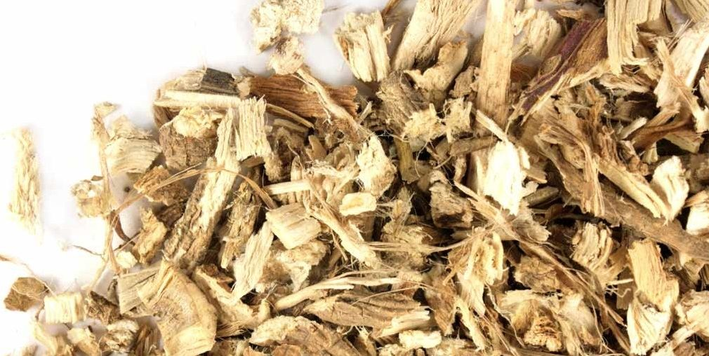 Marshmallow Root Native Remedies