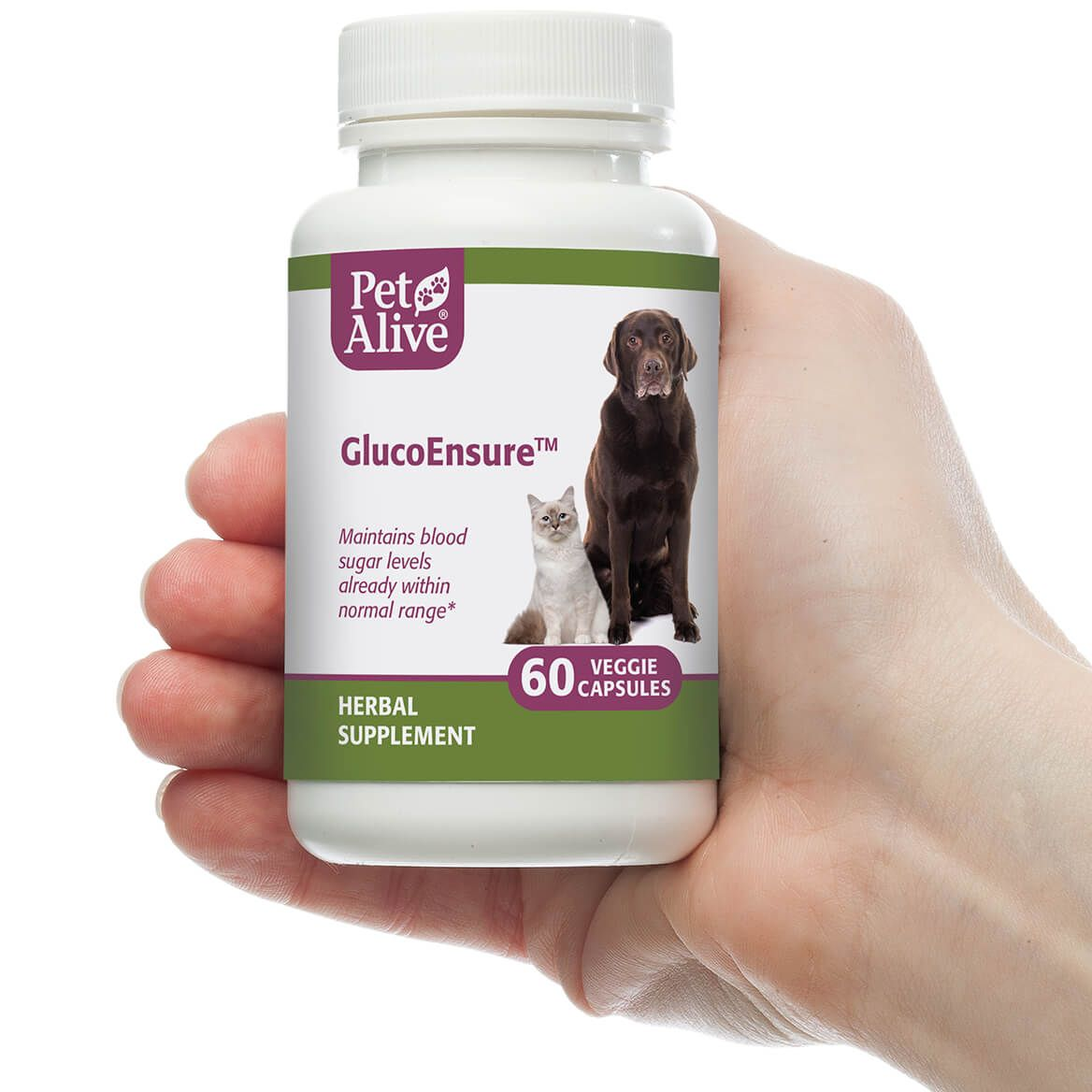 GlucoEnsure™ for Pet Blood Sugar Support-351899