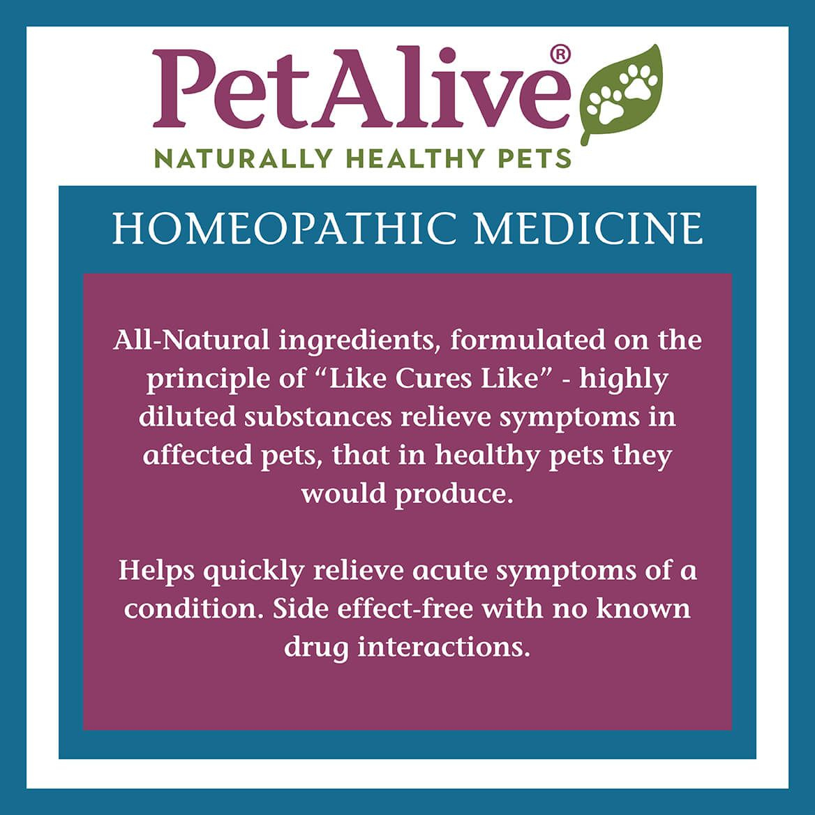 EaseSure-M™ for Nervous System Calm in Pets-352536