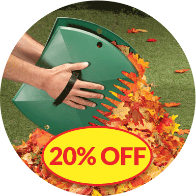20% Off Fall Clean Up Image