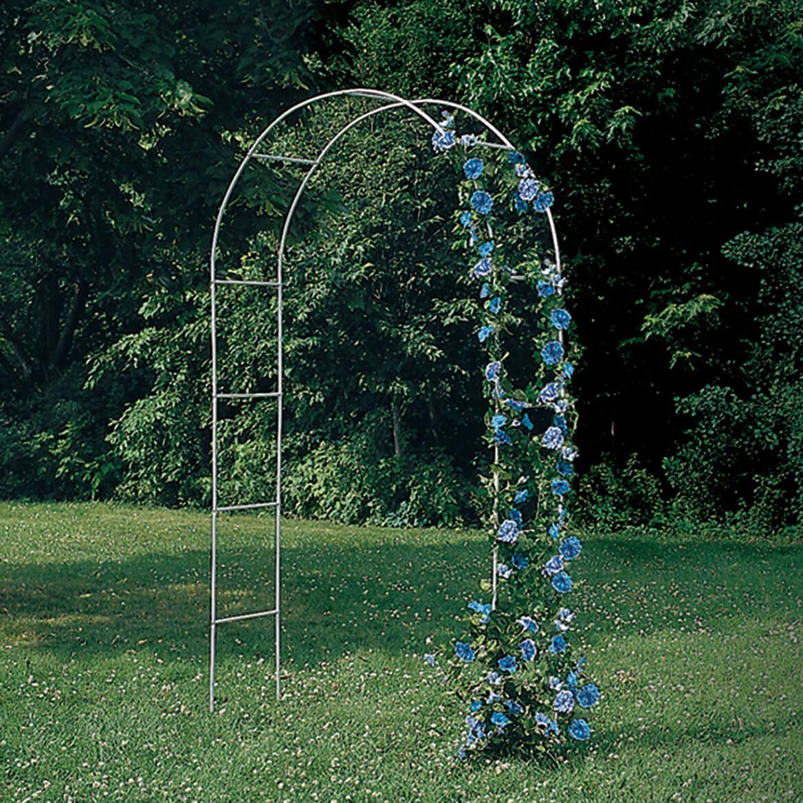 White Arched Garden Trellis-318049