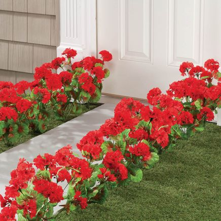All-Weather Red Geranium Bush by OakRidge™-348129