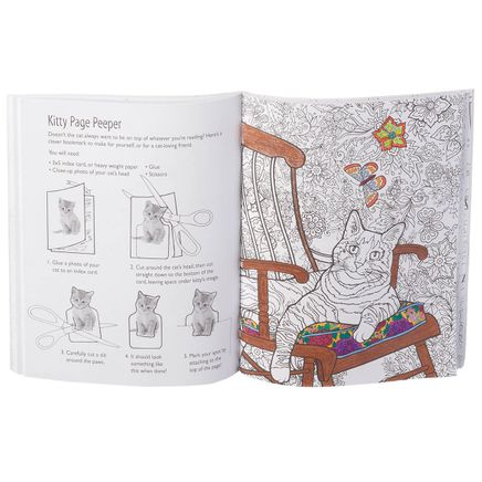Color Crafts and Doodle Cats Activity Book-361554