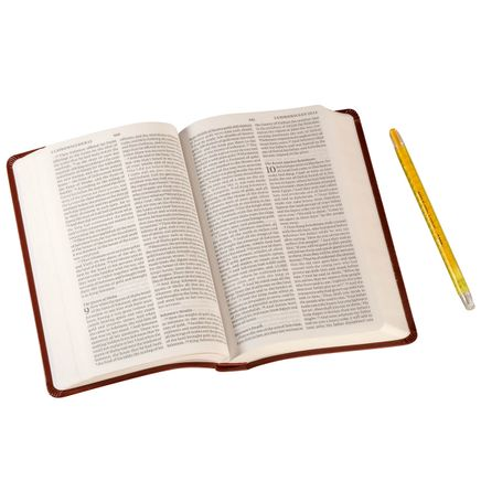 ESV  Value Thinline Bible-363326