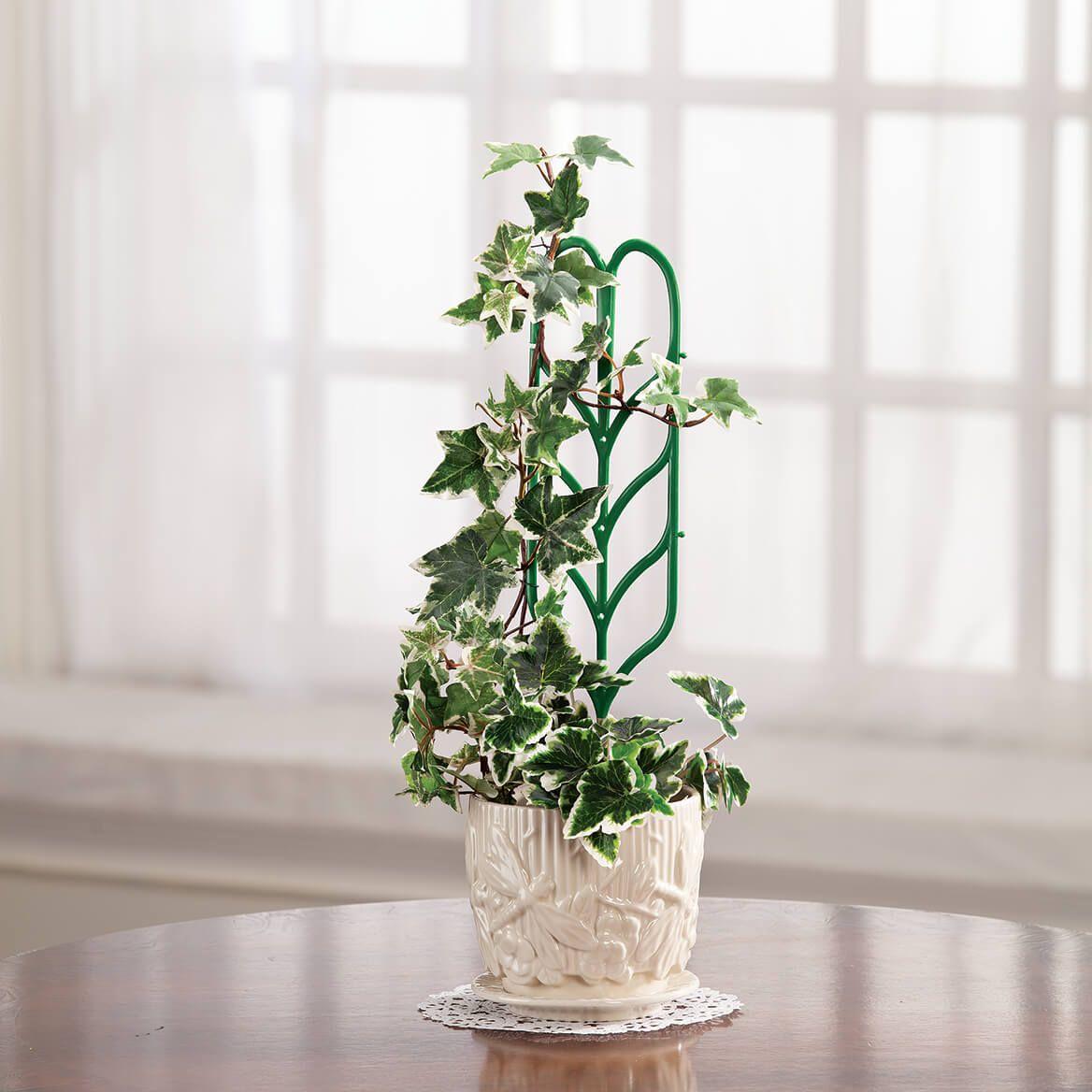 Mini Garden Trellis, Set of 3-371317