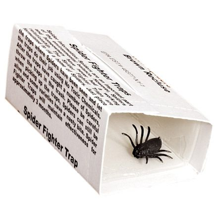 Spider Traps - Set of 4-304559