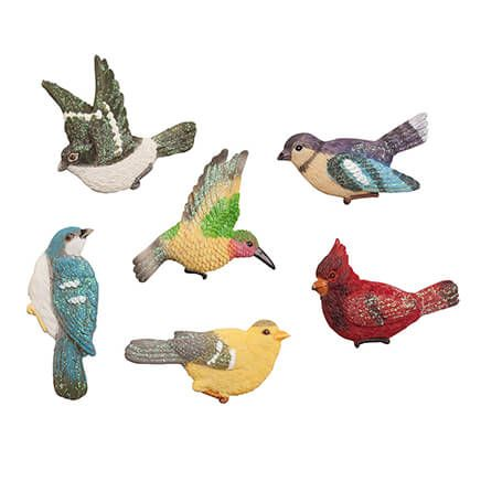 Songbird Magnets, Set of 6-364193