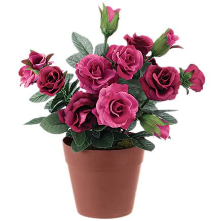 Mini Potted Rose by OakRidge™-369004