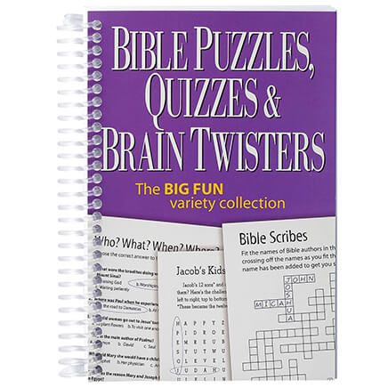 Bible Puzzles, Quizzes & Brain Twisters Mini Book-369621